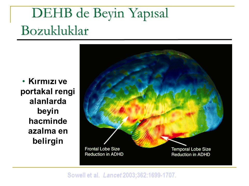 DEHB de Beyin Yapısal Bozukluklar DEHB de Beyin Yapısal Bozukluklar Kırmızı ve portakal rengi alanlarda beyin hacminde azalma en belirgin Sowell et al.