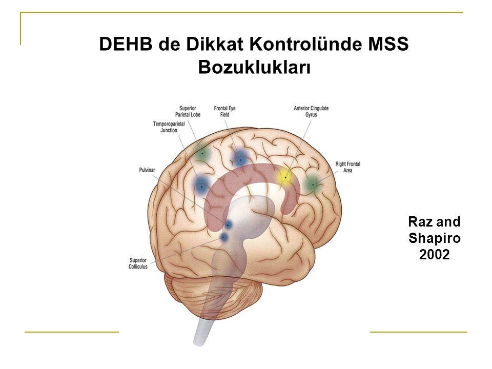 DEHB de Dikkat Kontrolünde MSS Bozuklukları Raz and Shapiro 2002