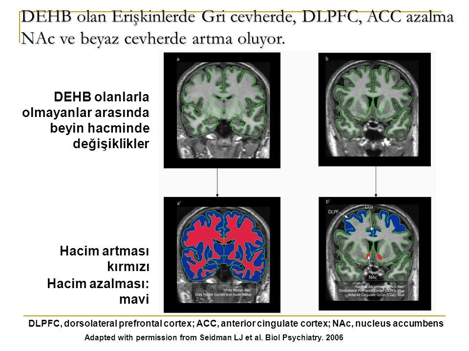 DEHB olan Erişkinlerde Gri cevherde, DLPFC, ACC azalma NAc ve beyaz cevherde artma oluyor.