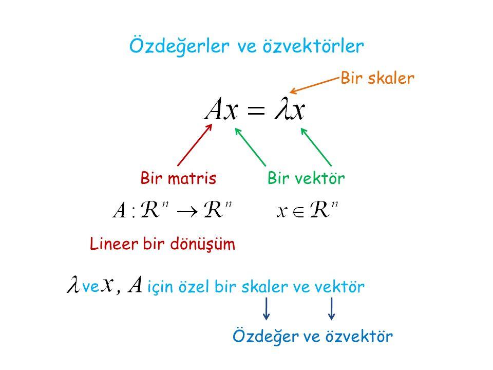 Özdeğerler ve özvektörler Bir matris Lineer bir dönüşüm Bir vektör Bir skaler ve, A için özel bir skaler ve vektör Özdeğer ve özvektör