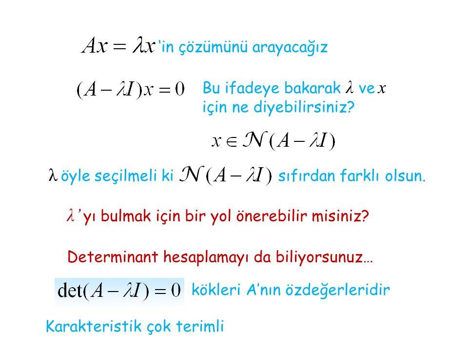 'in çözümünü arayacağız Bu ifadeye bakarak λ ve x için ne diyebilirsiniz.