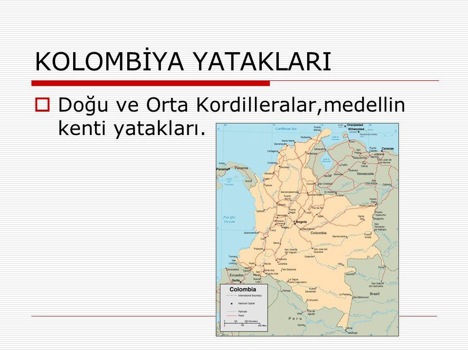 KOLOMBİYA YATAKLARI  Doğu ve Orta Kordilleralar,medellin kenti yatakları.