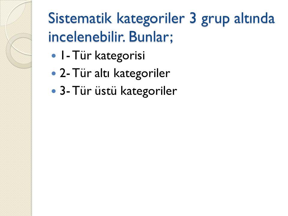 Sistematik kategoriler 3 grup altında incelenebilir.