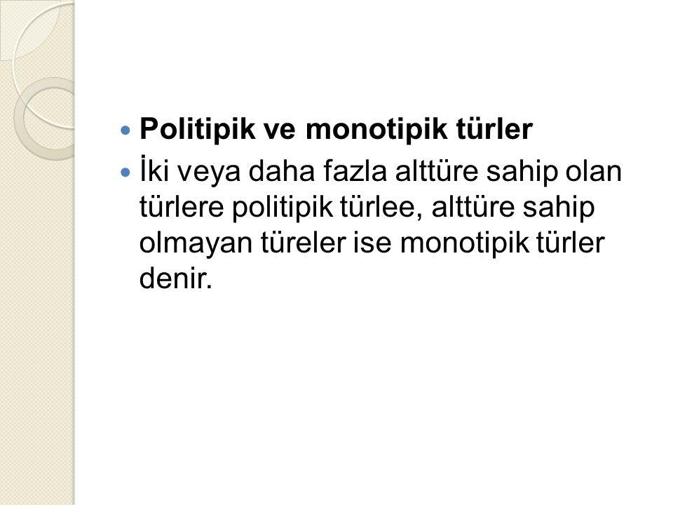 Politipik ve monotipik türler İki veya daha fazla alttüre sahip olan türlere politipik türlee, alttüre sahip olmayan türeler ise monotipik türler denir.