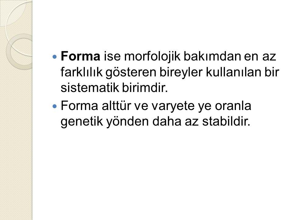 Forma ise morfolojik bakımdan en az farklılık gösteren bireyler kullanılan bir sistematik birimdir.
