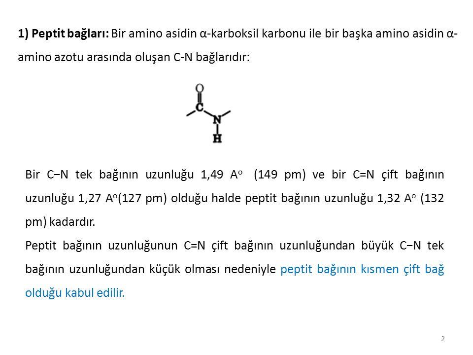 13 Bir proteinin sekonder (ikinci) yapısı Bir proteinin sekonder (ikinci) yapısı, yarı sertleşmiş polipeptit zincirlerinin bükülmeler ve katlanmalarla oluşturdukları özgün kangallar biçimindeki yapısıdır.