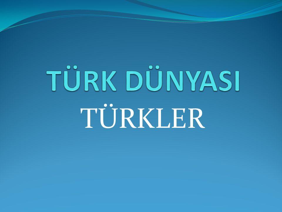TURKSOY TÜRK KÜLTÜR VE SANATLARI ORTAK YÖNETİMİ Uluslararası Türk Kültürü Teşkilatı (TÜRKSOY), Türk dil ailesine ait dilleri konuşan Türk nüfusuna sahip ülkeler ve topluluklar arası uluslararası kültür örgütüdür.