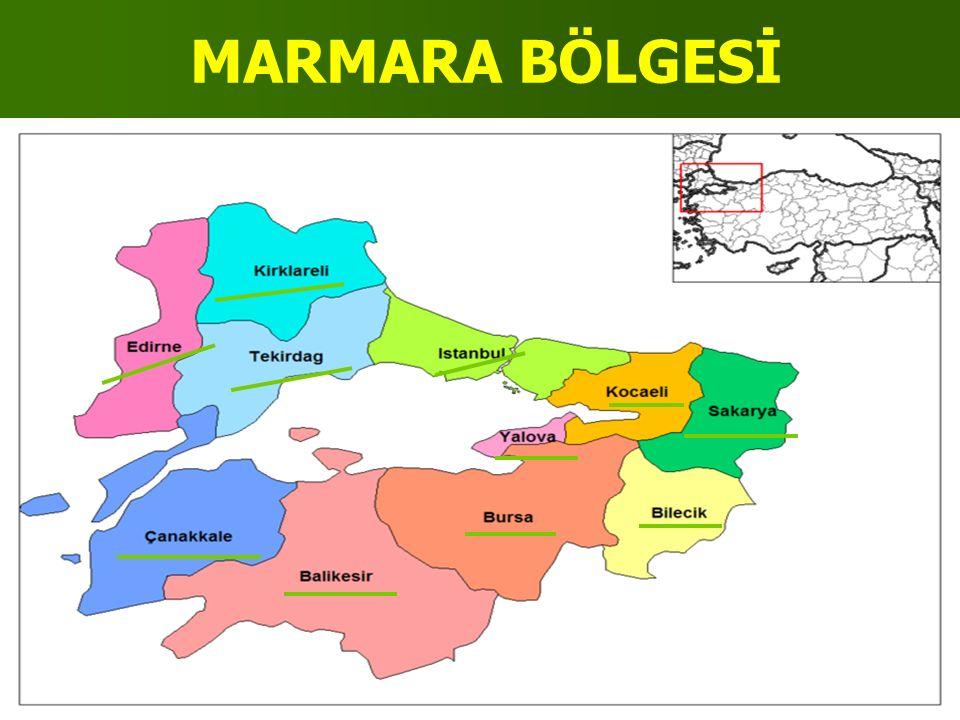 KONUMU(YERİ),SINIRLARI VE KOMŞULARI Ülkemizin kuzeybatısında yer alır.Bulgaristan,Yunanistan,Karadeniz, Marmara Denizi,Ege Denizi ile Ege Bölgesi,Karadeniz Bölgesi, İç Anadolu Bölgesi ile komşudur.