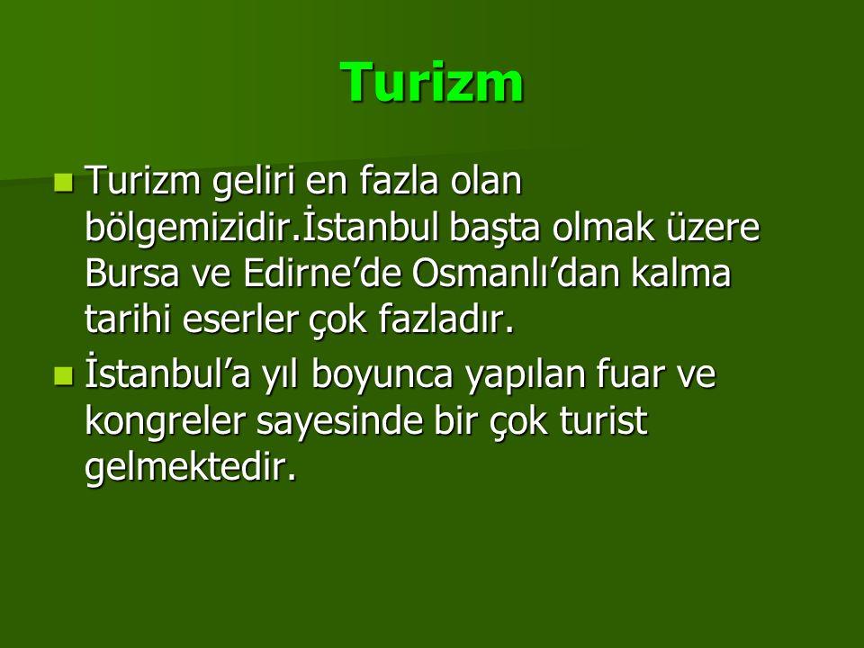 Turizm Turizm geliri en fazla olan bölgemizidir.İstanbul başta olmak üzere Bursa ve Edirne'de Osmanlı'dan kalma tarihi eserler çok fazladır. İstanbul'