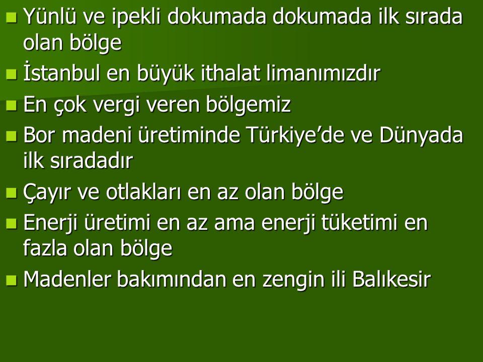 Yünlü ve ipekli dokumada dokumada ilk sırada olan bölge İstanbul en büyük ithalat limanımızdır En çok vergi veren bölgemiz Bor madeni üretiminde Türki
