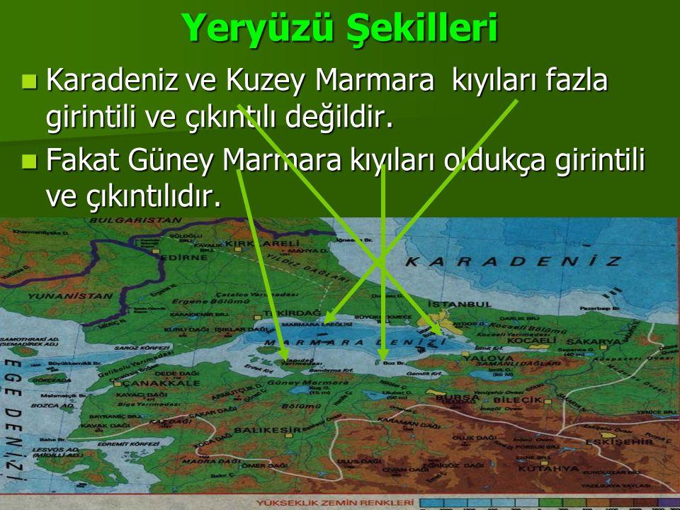 Yeryüzü Şekilleri Karadeniz ve Kuzey Marmara kıyıları fazla girintili ve çıkıntılı değildir. Fakat Güney Marmara kıyıları oldukça girintili ve çıkıntı