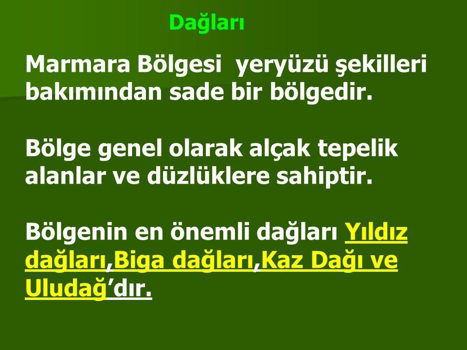 Yünlü ve ipekli dokumada dokumada ilk sırada olan bölge İstanbul en büyük ithalat limanımızdır En çok vergi veren bölgemiz Bor madeni üretiminde Türkiye'de ve Dünyada ilk sıradadır Çayır ve otlakları en az olan bölge Enerji üretimi en az ama enerji tüketimi en fazla olan bölge Madenler bakımından en zengin ili Balıkesir