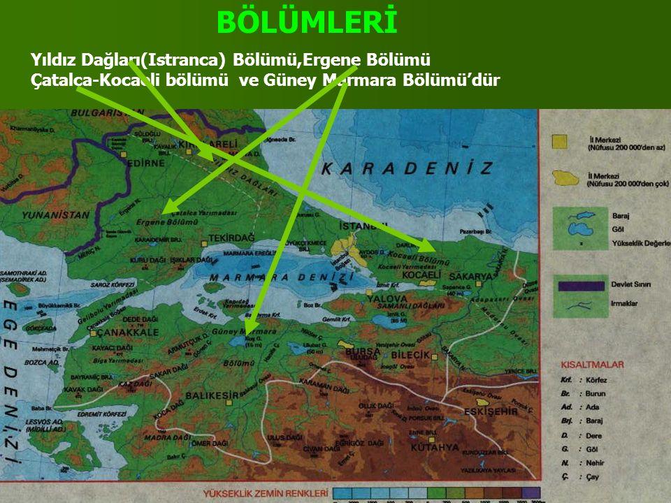 BÖLÜMLERİ Yıldız Dağları(Istranca) Bölümü,Ergene Bölümü Çatalca-Kocaeli bölümü ve Güney Marmara Bölümü'dür