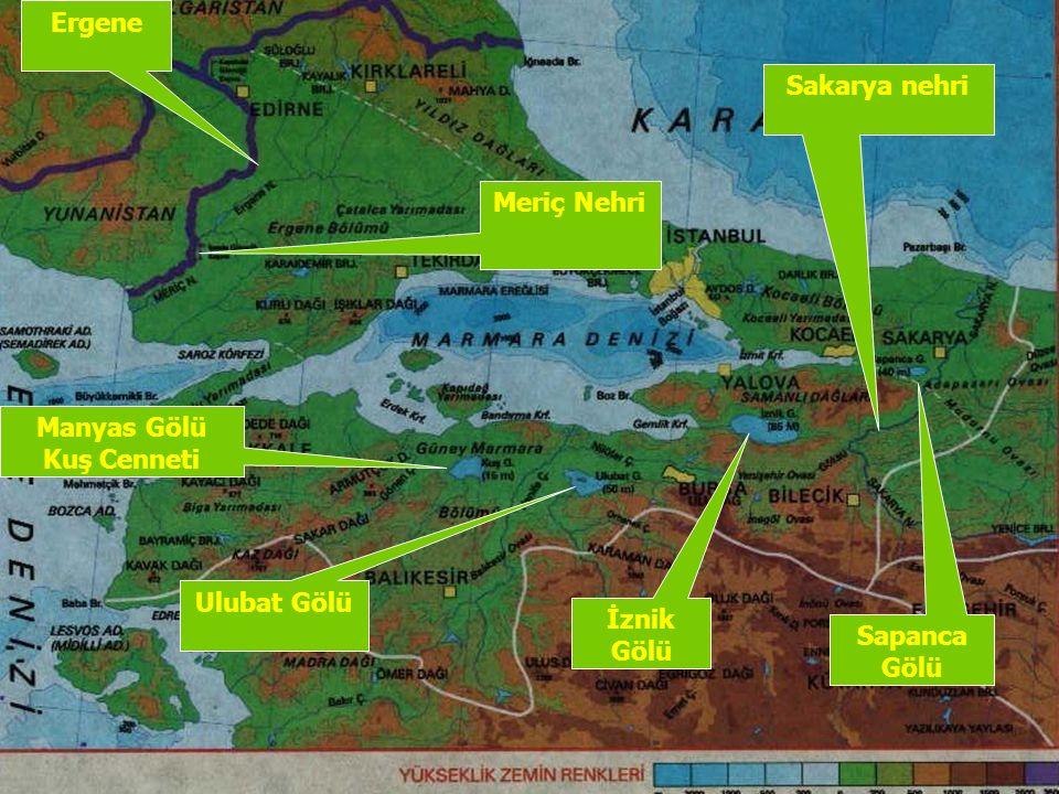 İklim ve Bitki Örtüsü Marmara bölgesi konumu sebebiyle iklim ve bitki çeşitliliğine sahip bir bölgedir.