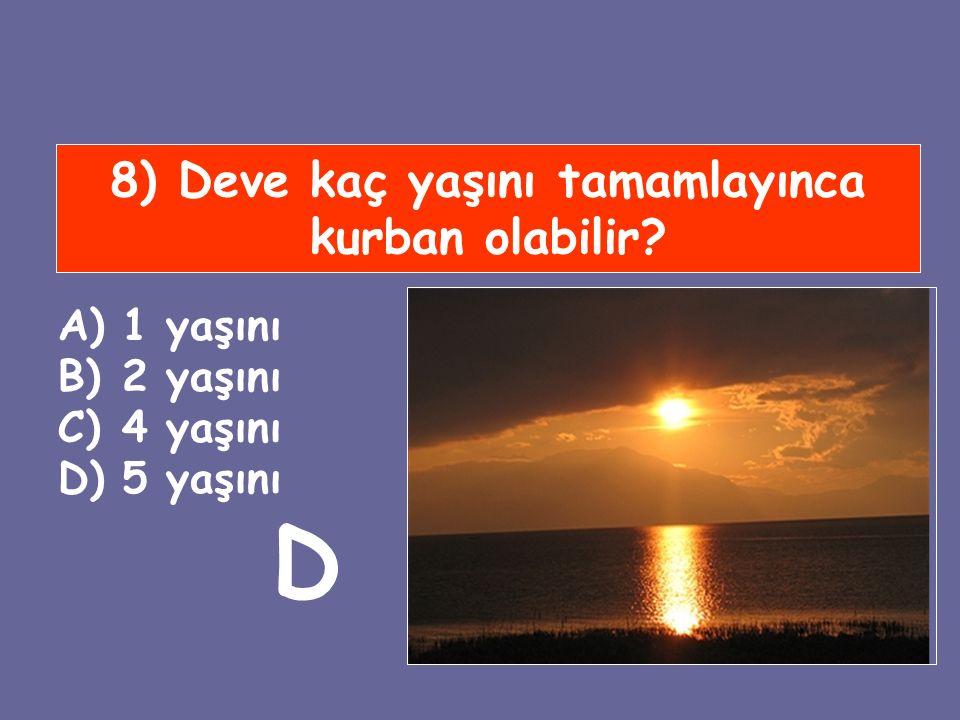 8) Deve kaç yaşını tamamlayınca kurban olabilir? A)1 yaşını B)2 yaşını C)4 yaşını D)5 yaşını D