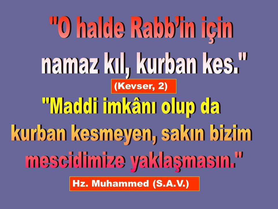 (Kevser, 2) Hz. Muhammed (S.A.V.)