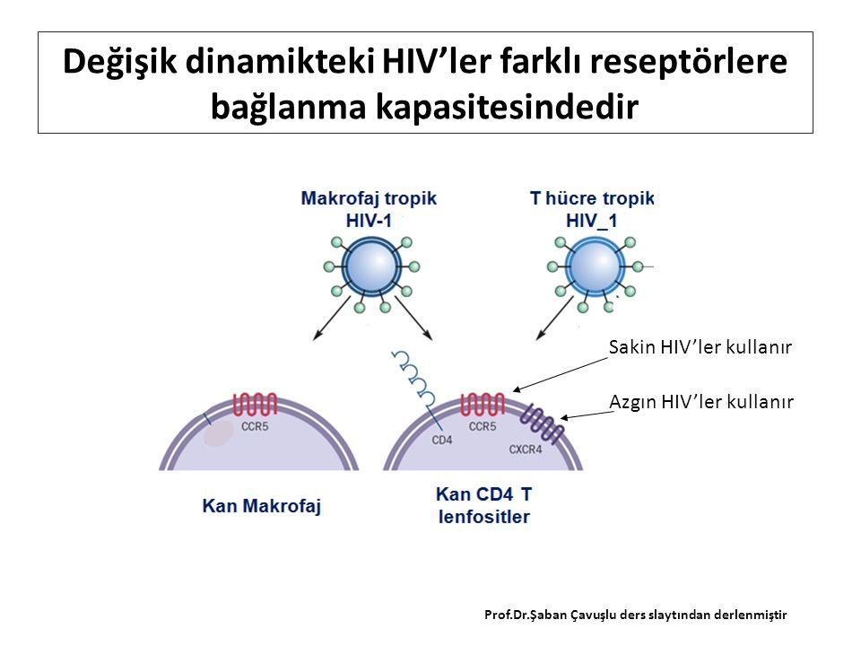 Değişik dinamikteki HIV'ler farklı reseptörlere bağlanma kapasitesindedir Azgın HIV'ler kullanır Sakin HIV'ler kullanır Prof.Dr.Şaban Çavuşlu ders slaytından derlenmiştir