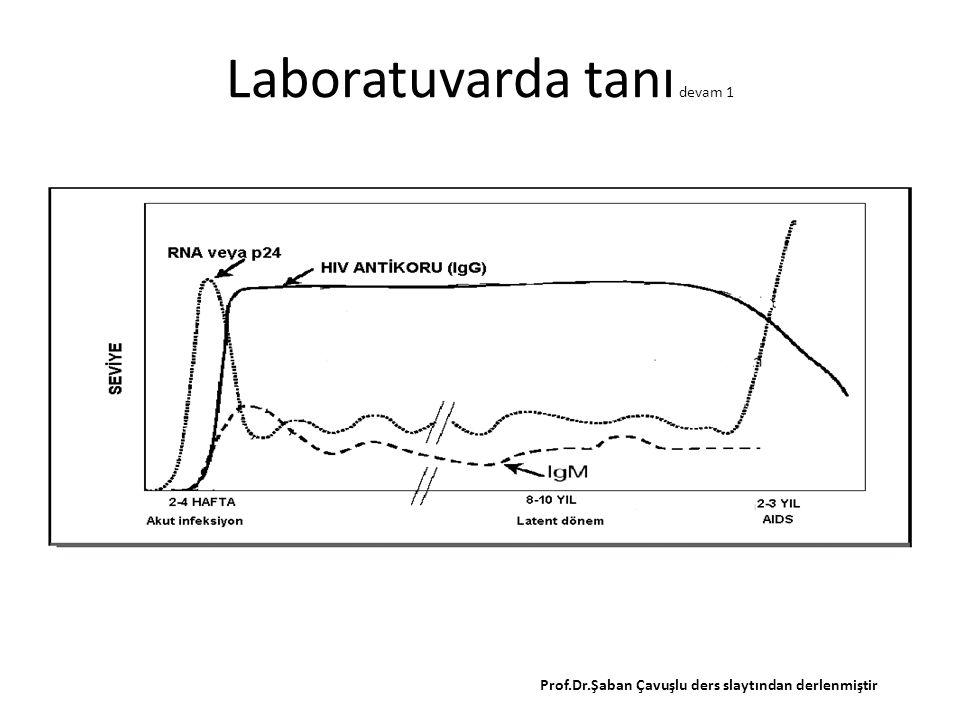 Laboratuvarda tanı devam 1 Prof.Dr.Şaban Çavuşlu ders slaytından derlenmiştir