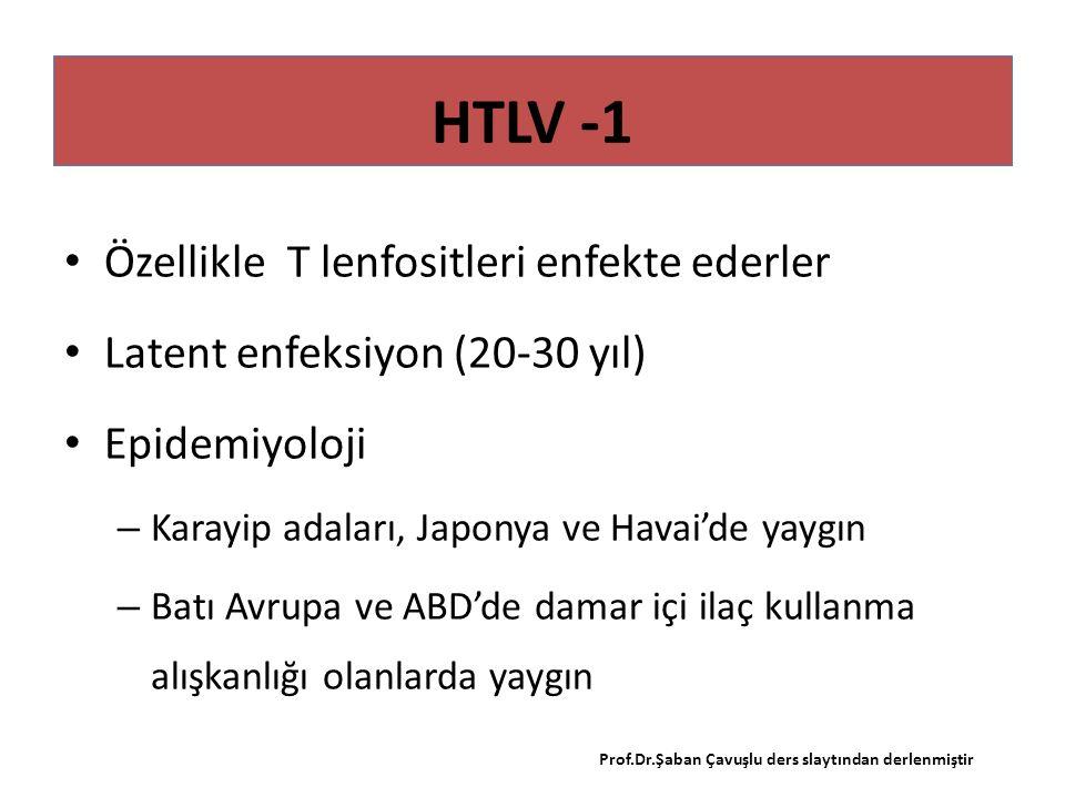 HTLV -1 Özellikle T lenfositleri enfekte ederler Latent enfeksiyon (20-30 yıl) Epidemiyoloji – Karayip adaları, Japonya ve Havai'de yaygın – Batı Avrupa ve ABD'de damar içi ilaç kullanma alışkanlığı olanlarda yaygın Prof.Dr.Şaban Çavuşlu ders slaytından derlenmiştir