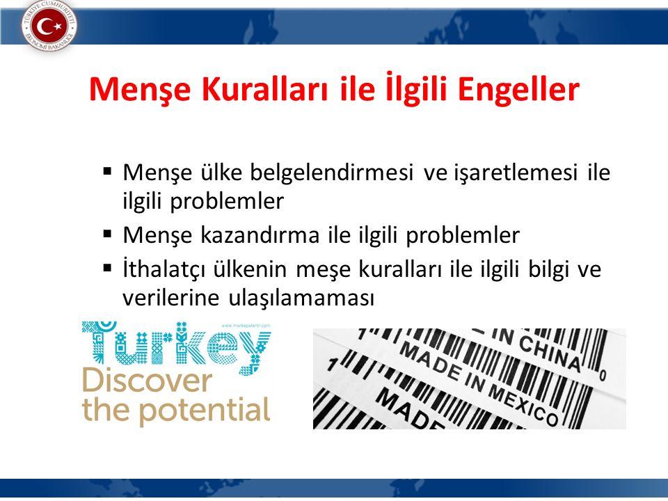 Fikri Mülkiyet Haklarının Korunması ile İlgili Problemler  Patentli, markalı ya da telif hakkına sahip ürünlerin dış pazarlarda taklidi  Patent, marka ya da telif hakkının yabancı ülkelerde tescil ettirilmesinde yaşanan sorunlar