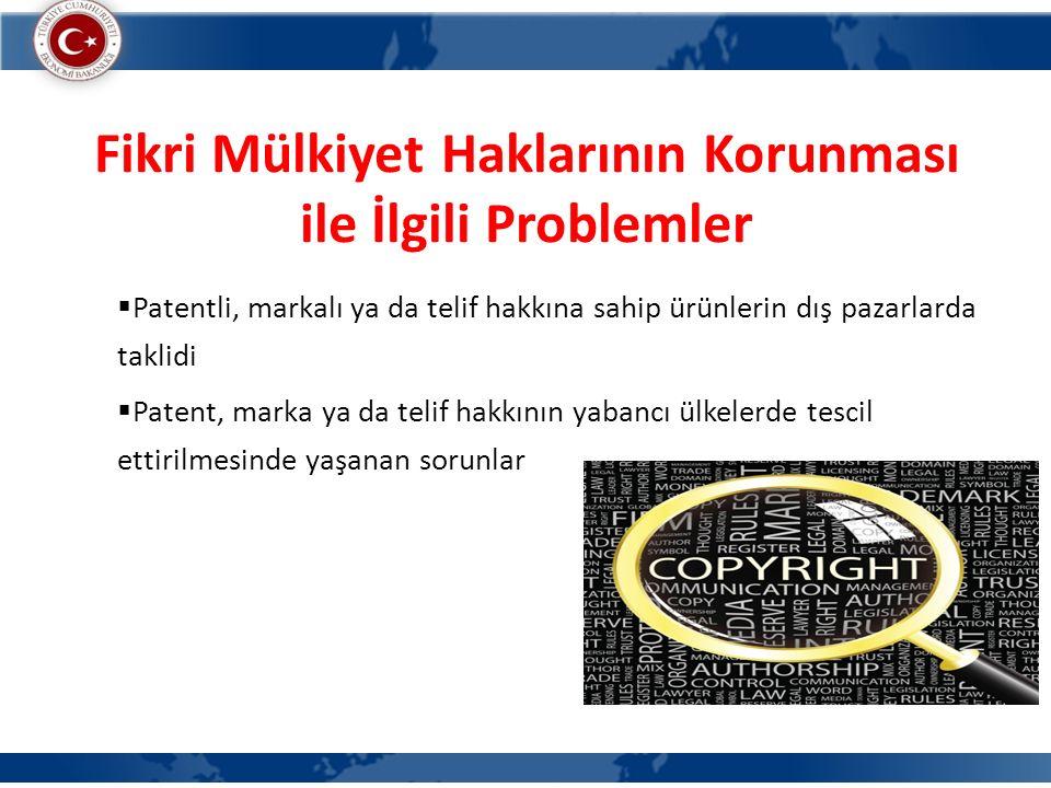 Fikri Mülkiyet Haklarının Korunması ile İlgili Problemler  Patentli, markalı ya da telif hakkına sahip ürünlerin dış pazarlarda taklidi  Patent, mar