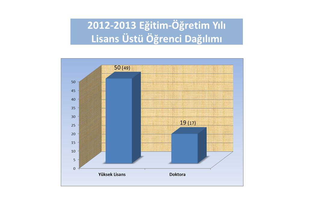2012-2013 Eğitim-Öğretim Yılı Lisans Üstü Öğrenci Dağılımı