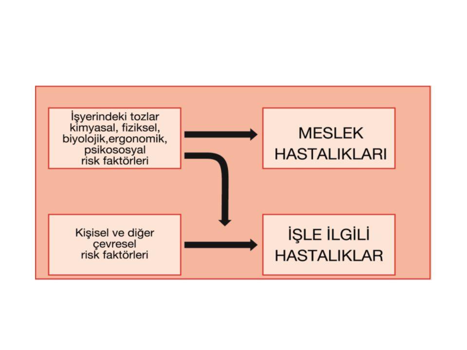 Meslek hastalıkları sınıflaması ILO tarafından yapılan başka bir sınıflama 1-İşin yürütümü sırasında karşılaşılan etkenlerle (Kimyasal, Fiziksel, Biyolojik alt başlıkları ile) 2-Hedef Organlar (Solunum, Deri, Kas- iskelet, Ruhsal ve Davranışsal alt başlıkları ile) 3-Mesleksel Kanserler 4-Diğer hastalıklar