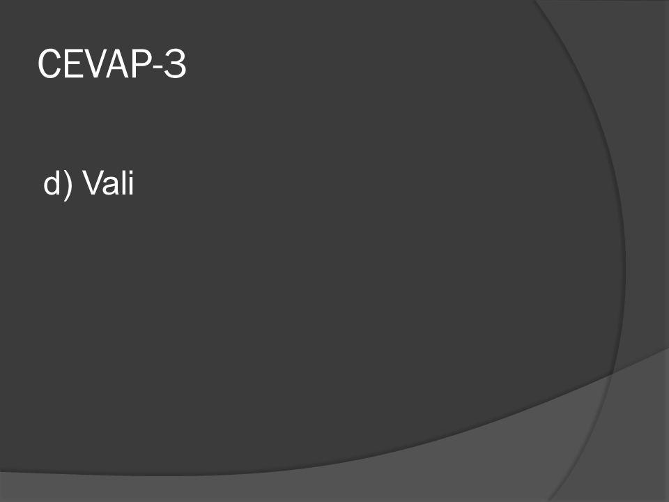 CEVAP-3 d) Vali