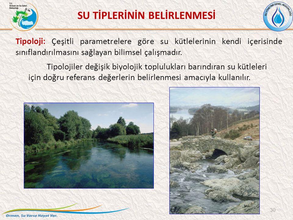 SU TİPLERİNİN BELİRLENMESİ 30 Tipolojiler değişik biyolojik toplulukları barındıran su kütleleri için doğru referans değerlerin belirlenmesi amacıyla kullanılır.