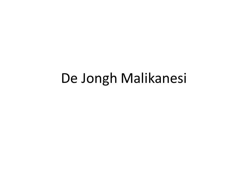 De Jongh Malikanesi
