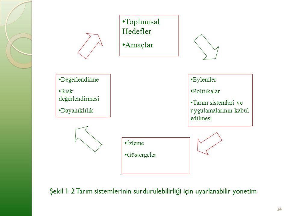 Toplumsal Hedefler Amaçlar Değerlendirme Risk değerlendirmesi Dayanıklılık Eylemler Politikalar Tarım sistemleri ve uygulamalarının kabul edilmesi İzleme Göstergeler Şekil 1-2 Tarım sistemlerinin sürdürülebilirli ğ i için uyarlanabilir yönetim 34