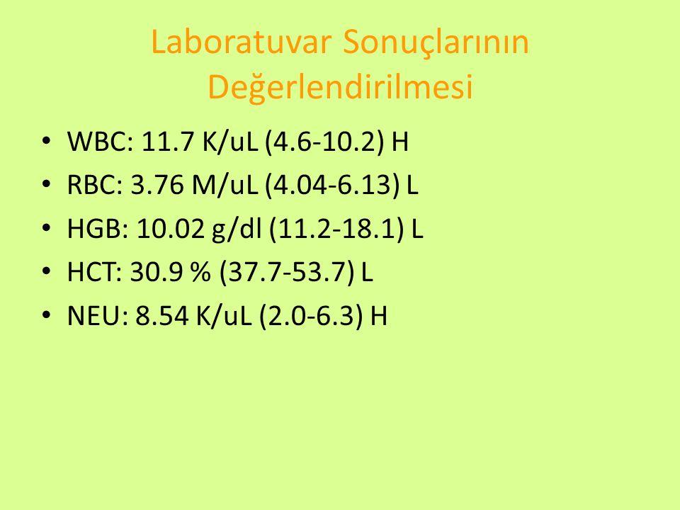 Laboratuvar Sonuçlarının Değerlendirilmesi WBC: 11.7 K/uL (4.6-10.2) H RBC: 3.76 M/uL (4.04-6.13) L HGB: 10.02 g/dl (11.2-18.1) L HCT: 30.9 % (37.7-53
