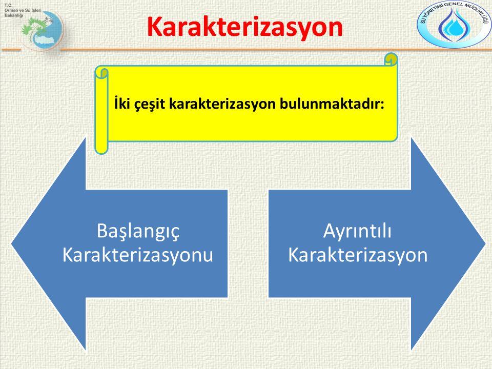 Başlangıç Karakterizasyonu Ayrıntılı Karakterizasyon İki çeşit karakterizasyon bulunmaktadır: