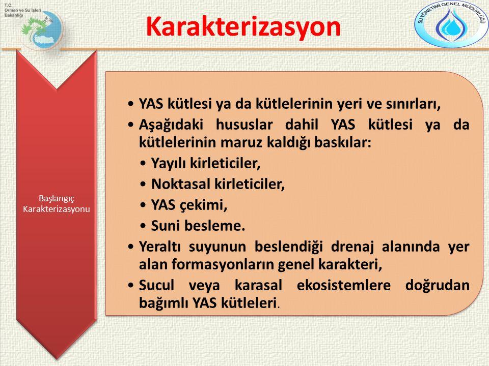 Karakterizasyon Başlangıç Karakterizasyonu YAS kütlesi ya da kütlelerinin yeri ve sınırları, Aşağıdaki hususlar dahil YAS kütlesi ya da kütlelerinin m
