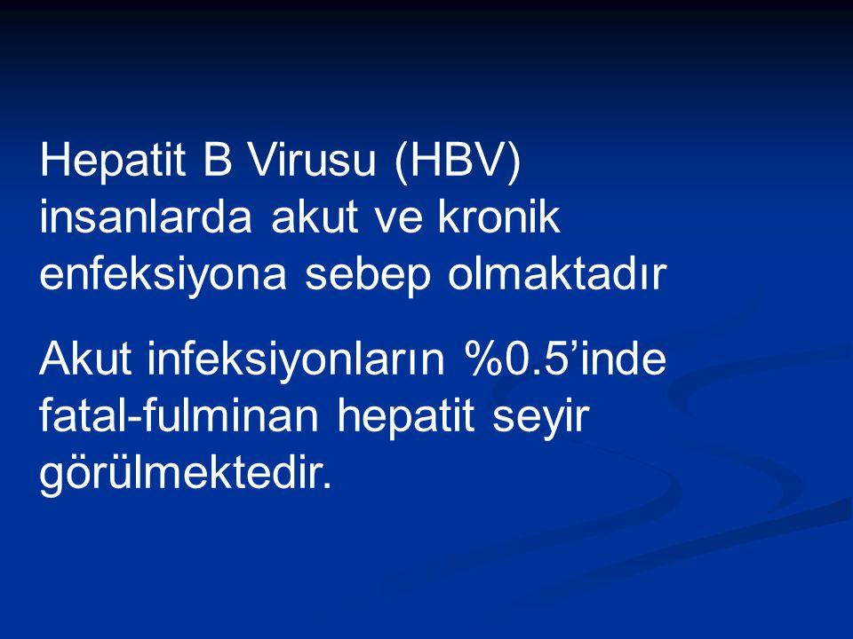 Hepatit B Virusu (HBV) insanlarda akut ve kronik enfeksiyona sebep olmaktadır Akut infeksiyonların %0.5'inde fatal-fulminan hepatit seyir görülmektedir.