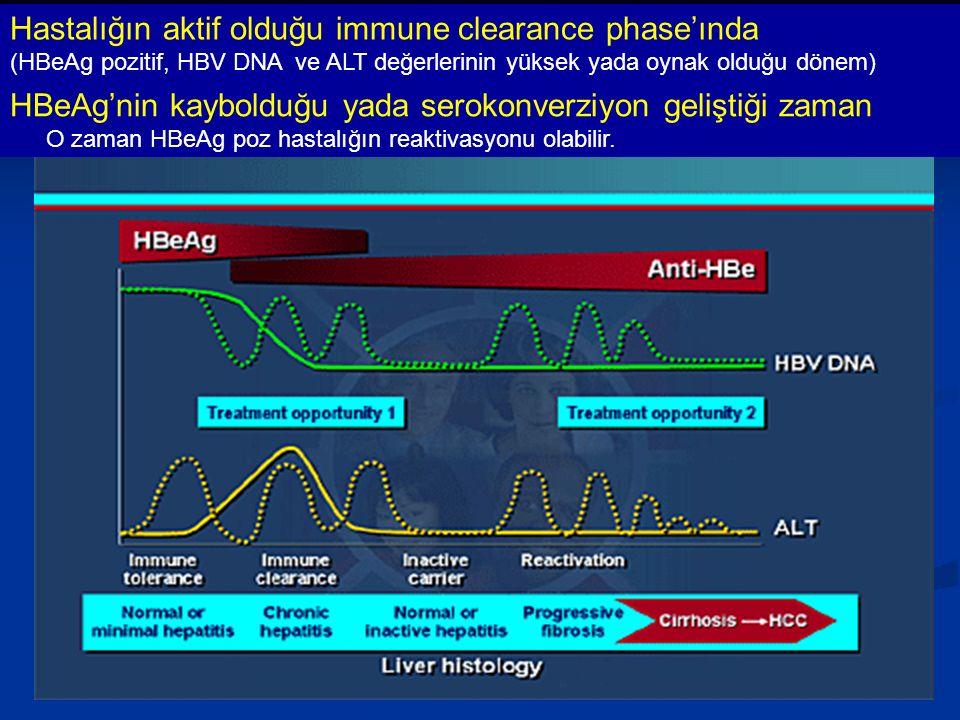 HBeAg'nin kaybolduğu yada serokonverziyon geliştiği zaman O zaman HBeAg poz hastalığın reaktivasyonu olabilir.