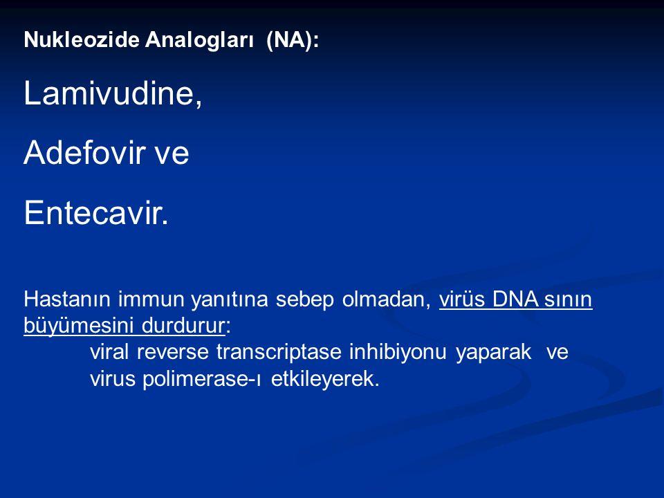 Nukleozide Analogları (NA): Lamivudine, Adefovir ve Entecavir.