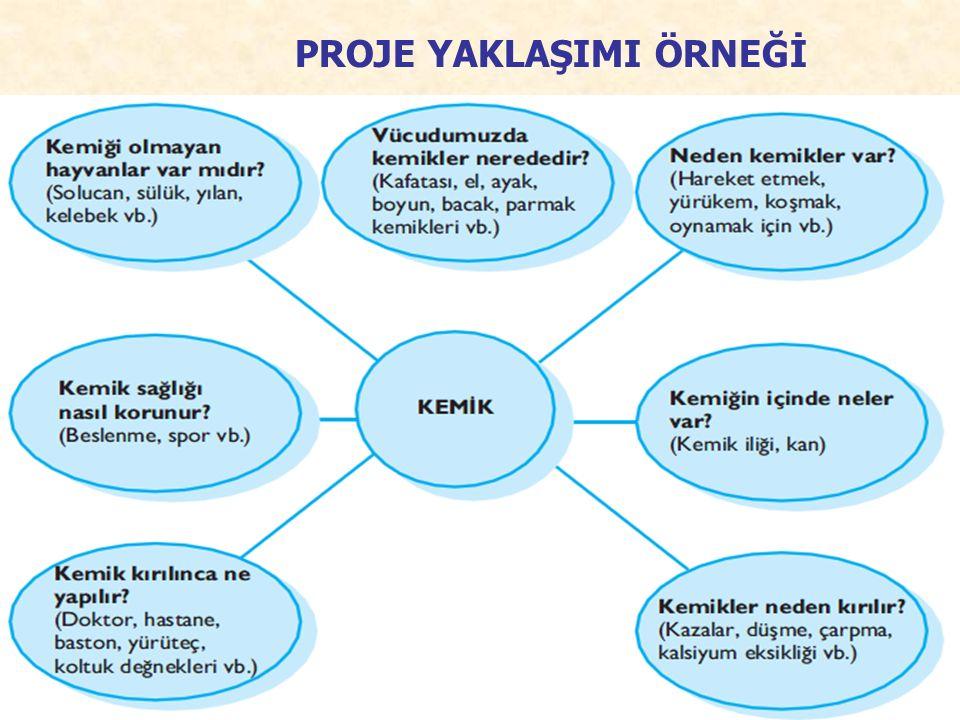 PROJE YAKLAŞIMI ÖRNEĞİ Kemik projesi. 109