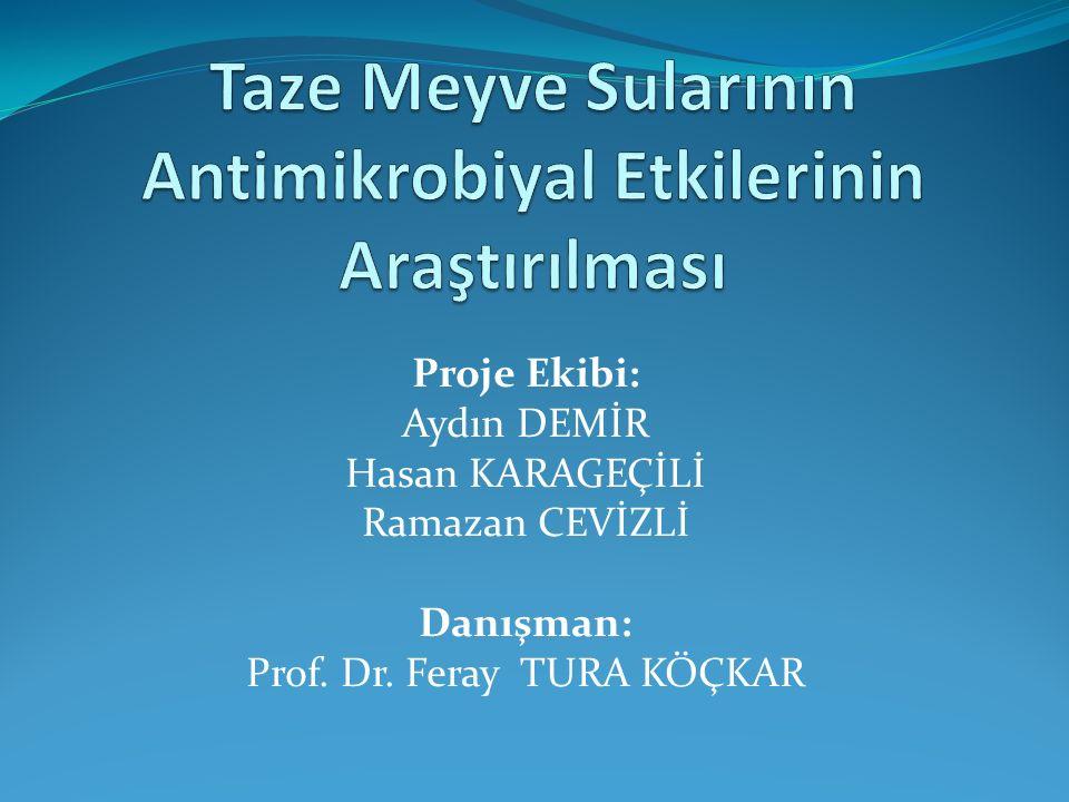 Proje Ekibi: Aydın DEMİR Hasan KARAGEÇİLİ Ramazan CEVİZLİ Danışman: Prof. Dr. Feray TURA KÖÇKAR