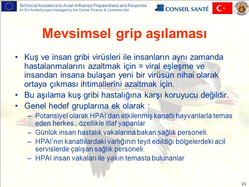 Technical Assistance to Avian Influenza Preparedness and Response An EU-funded project managed by the Central Finance & Contracts Unit 20 Mevsimsel gr
