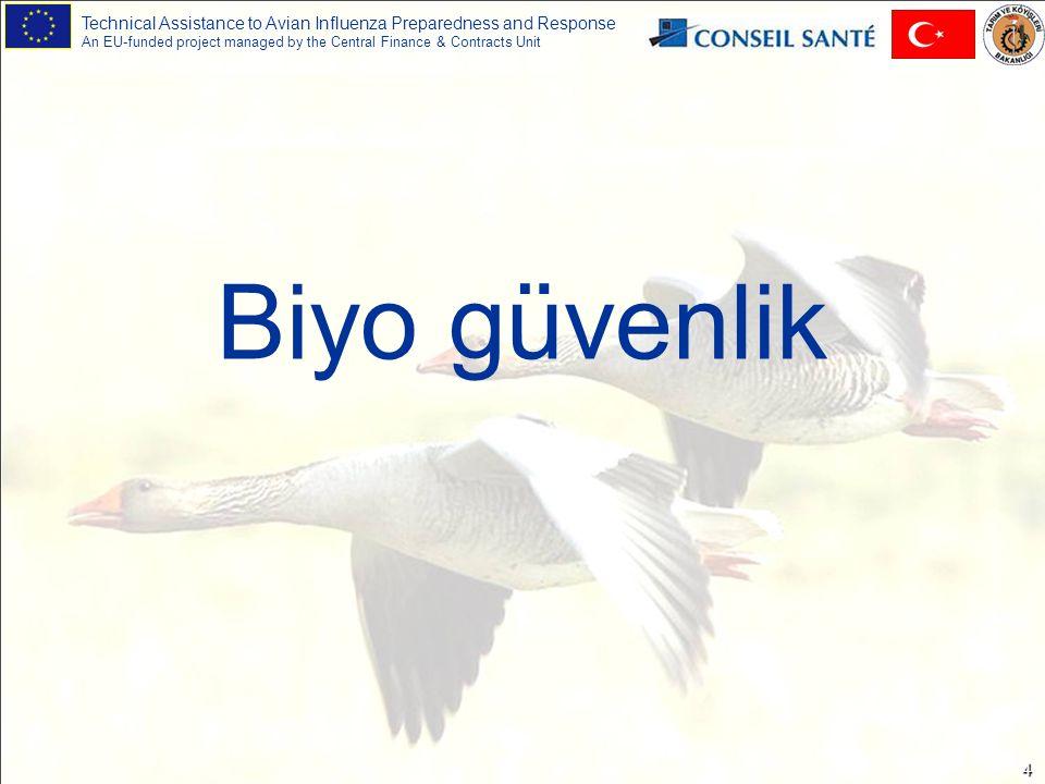 Technical Assistance to Avian Influenza Preparedness and Response An EU-funded project managed by the Central Finance & Contracts Unit 15 Koruyucu ekipman kullanımı Tek kullanımlık eldivenler veya ağır iş için dezenfekte edilebilir lastik eldivenler.
