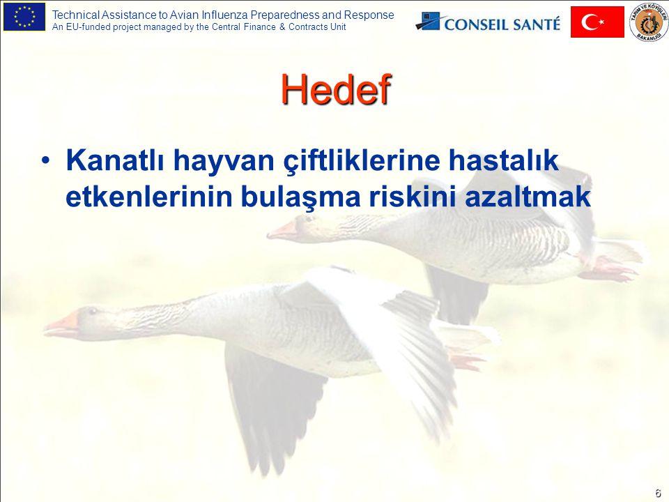 Technical Assistance to Avian Influenza Preparedness and Response An EU-funded project managed by the Central Finance & Contracts Unit 7 Hayvanları hedef alan önlemler Sulama ve besleme noktalarını çit veya ağlarla koruyarak evcil kanatlı hayvanların yabani kuşlarla temasından kaçınılması, Çiftlikte yetiştirilen farklı türlerin birbirlerinden ayrılması, Diğer hayvanlarla, özellikle köpekler, kediler ve kemirgenlerle temastan kaçınılması, Yeni alınan veya kümese yeniden tekrar konulacak kanatlıların ( pazarda satılmamış hayvanlar gibi) sürüye karıştırılmadan önce karantinaya alınması (3 haftalık tecrit) Çiftlikte hastalık kontrolünü kolaylaştırmak için hepsi içeri-hepsi dışarı yaklaşımının benimsenmesi.