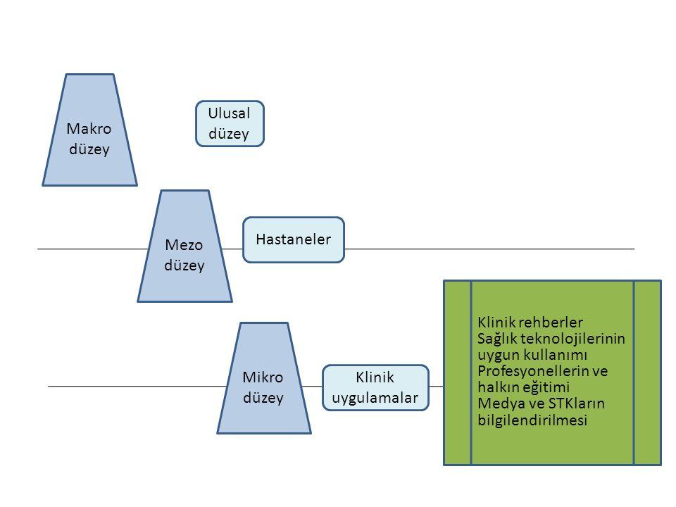 Makro düzey Ulusal düzey Mezo düzey Hastaneler Mikro düzey Klinik uygulamalar ULUSLAR ARASI STD