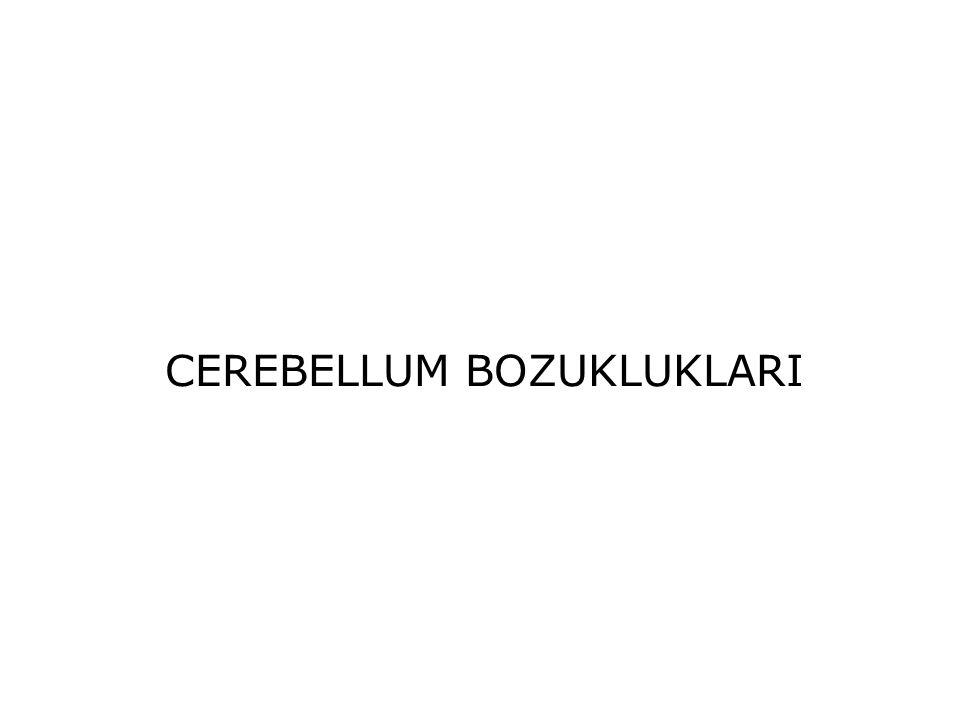 CEREBELLUM BOZUKLUKLARI