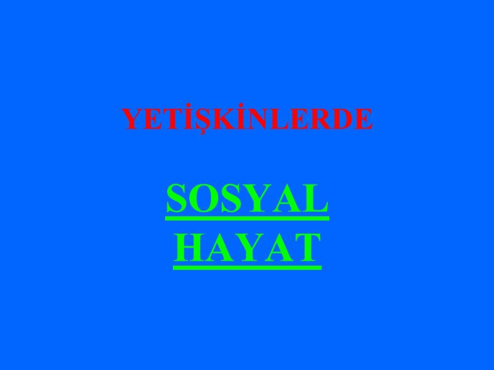 YETİŞKİNLERDE SOSYAL HAYAT