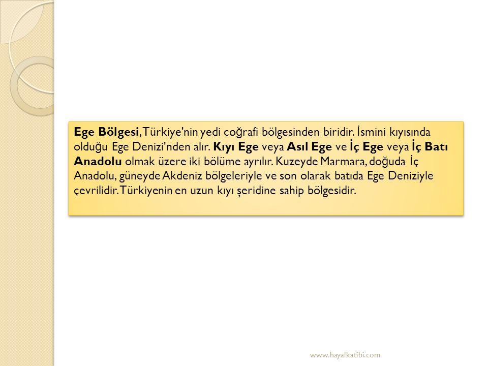 EGE BÖLGES İ N İ N YEMEKLER İ www.hayalkatibi.com