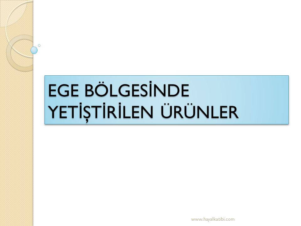 EGE BÖLGES İ NDE YET İ ŞT İ R İ LEN ÜRÜNLER www.hayalkatibi.com