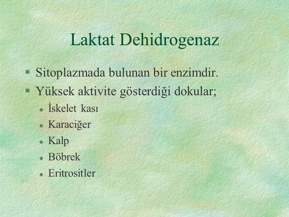 Laktat Dehidrogenaz §Sitoplazmada bulunan bir enzimdir.