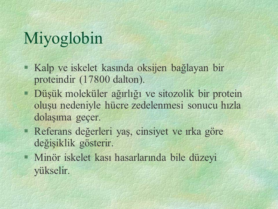 Miyoglobin §Kalp ve iskelet kasında oksijen bağlayan bir proteindir (17800 dalton).