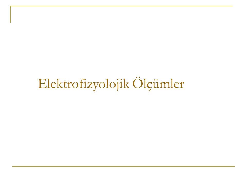 Elektrofizyolojik Ölçümler
